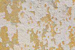 Texture painted cement wall sunny summer Royalty Free Stock Photo