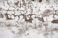 Texture painted concrete wall. The surface of the old cracked concrete wall Royalty Free Stock Photos