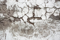 Texture painted concrete wall. The surface of the old cracked concrete wall Royalty Free Stock Image