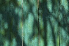 Texture of a painted wooden rough surface from boards of green color with a shadow from trees on a sunny day. Cropped shot, horizontal, background, place for royalty free illustration