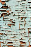 Texture of paints shabby wooden surface. Texture of contrast paints shabby wooden surface Royalty Free Stock Images