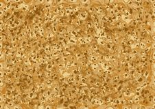 Texture of pancakes Stock Photography