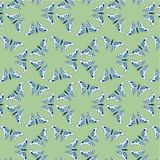 Texture, pattern: animal print - butterflies, arranged in a circle on a green background. The insect is light blue with a beautiful indigo pattern. For Stock Photography