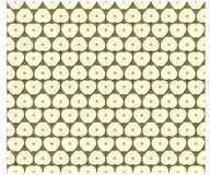 Texture pattern of an apple cut Stock Images