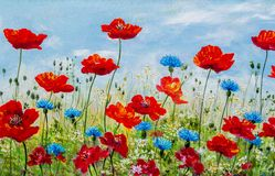 Texture, pattern, canvas painted in oils. The picture painted po. Ppies and cornflowers Royalty Free Stock Photography