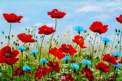 Texture, pattern, canvas painted in oils. The picture painted po. Ppies and cornflowers Stock Images