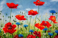 Texture, pattern, canvas painted in oils. The picture painted po. Ppies and cornflowers Royalty Free Stock Image