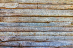 Texture and pattern of old  log Stock Image