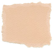 Isolated Fiber Paper Texture - Peach Orange XXXXL. Texture of peach orange fiber paper with torn edges. Isolated on white background Royalty Free Stock Images