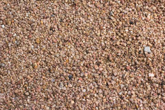 Texture of pebble Stock Photography