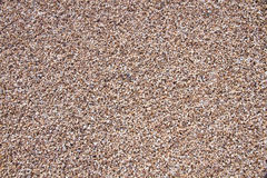 Texture Pebble Gravel Royalty Free Stock Photography