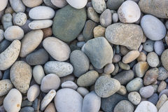 Texture of the pebbles Stock Photography