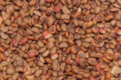 Texture, pet food dog care.  royalty free stock images