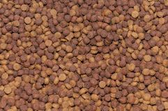 Texture, pet food dog care.  royalty free stock image