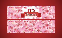 Texture from petals of rose, sakura and lotus on red background. floral wide hanging banner Royalty Free Stock Photos