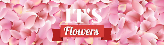 Texture from petals of rose, sakura and lotus on red background. floral wide hanging banner Stock Photo