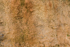 Texture photo of Australian wet natural limestone at the cliff i Stock Image