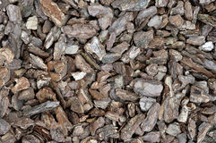 The texture of a pile of pine bark.  Royalty Free Stock Photos