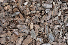 The texture of a pile of pine bark.  Royalty Free Stock Image