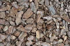 The texture of a pile of pine bark.  Stock Images