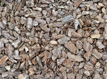 The texture of a pile of pine bark.  Royalty Free Stock Photo