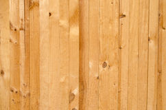 Texture of pine wood Royalty Free Stock Photo