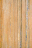 Texture of pine wood Royalty Free Stock Photography