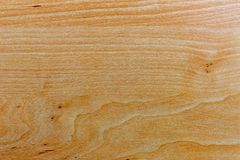 The texture of pine wood is light. Preparation for design_ royalty free stock photo