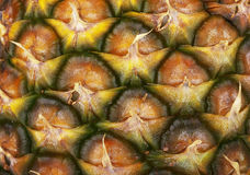 Texture of pineapple Stock Photography