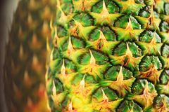 Texture of pineapple skin. Copy space. Beauty and diet concept. Macro shoot of pineapple fruit. Royalty Free Stock Photography