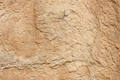 Texture of pink sandstone Royalty Free Stock Images