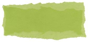 Isolated Fiber Paper Texture - Pistachio XXXXL. Texture of pistachio green fiber paper with torn edges. Isolated on white background Stock Photography