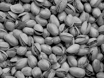 Texture of pistachio Royalty Free Stock Photography