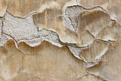 Texture of the plaster bulges Stock Photos