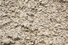 Texture the plaster Royalty Free Stock Image