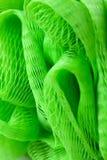 Texture of plastic bath sponge Stock Photos