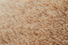 Texture of plush Royalty Free Stock Photography