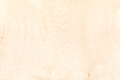 Texture of plywood board. highly-detailed natural pattern backgr Royalty Free Stock Photos