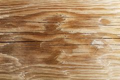 The texture of the polished cut of a tree in brown tones. The cut of the board of the sawn wood. Natural construction material. royalty free stock images