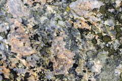 Texture of the polished surface of Filipstad Granite, macro shot Stock Image