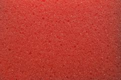 The texture of the porous surface of the sponge is red. royalty free stock photos