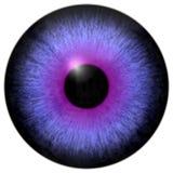 Texture pourpre de l'oeil 3d illustration de vecteur