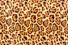 Texture of print fabric striped leopard. For background stock photos