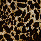 Texture of print fabric striped leopard Stock Photo