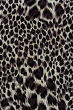 Texture of print fabric striped leopard. For background royalty free stock photography