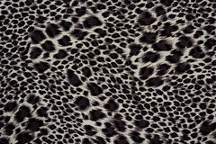 Texture of print fabric striped leopard. For background stock photo