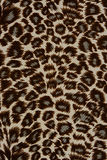 Texture of print fabric striped leopard. For background stock images
