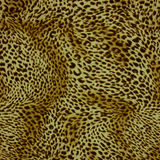 Texture of print fabric striped leopard. For background royalty free stock images