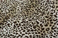 Texture of print fabric striped leopard for background. Used as raw material in publications and businesses royalty free stock image