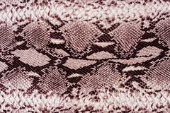 Texture of print fabric striped snake leather. For background Royalty Free Stock Image